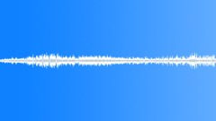 Bird - crane common 3 - HQ Sound Effect