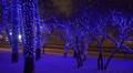 Christmas, New year time in city streets, decorated and illuminated. Footage