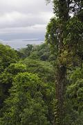 Overview of Arenal Lagoon from Rainforest, Costa Rica Stock Photos