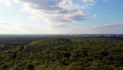 Berlin forest top Stock Footage