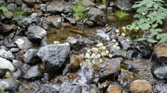 Peaceful sound of running water Stock Footage