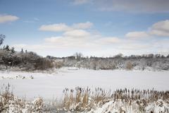 Grenadier Pond, High Park, Toronto, Ontario, Canada Stock Photos