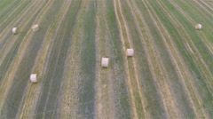 Flight over  slanted field with haycocks. Aerial top view Stock Footage