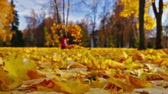 Autumn day in park, fallen leaves, strolling people, playing children. - stock footage