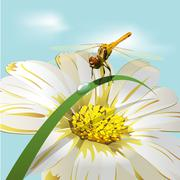 dragonfly on herb - stock illustration