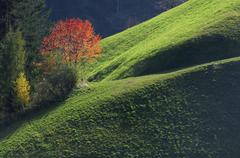 Bozen, Trentino-Alto Adige, Dolomites, South Tyrol, Italy - stock photo