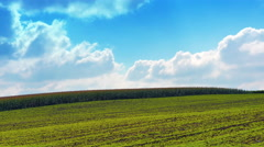 4K agricultural countryside landscape in France Stock Footage
