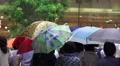 Pedestrians Witn Umbrella Rainy Day Tokyo City Streets 4K 4k or 4k+ Resolution