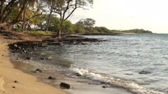 Waves crashing up on A-Bay in Hawaii.  Trees in Background Stock Footage