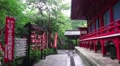 Red Shinto Templa In Green Forest On Rainy Day HD Footage