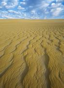 Stock Photo of Sand Dune, Pinnacle Desert, Nambung National Park, Australia