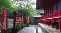 Red Shinto Templa In Green Forest On Rainy Day 4K 4k or 4k+ Resolution