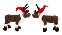 Animal love: two reindeer or elk with santa hat for christmas decoration Stock Photos