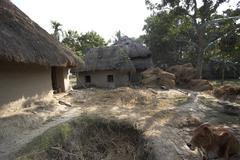 Stock Photo of Namkhana Village, South 24 Parganas District, West Bengal, India