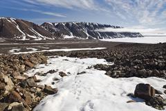 Arctic Fox Tracks in the Snow, Craig Harbour, Ellesmere Island, Nunavut, Canada Stock Photos