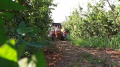 Tractor in orchard Stock Footage
