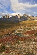 Blueberry Bushes and Mt Monolith, Tombstone Territorial Park, Yukon, Canada Stock Photos