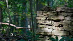 Old stone wall from house deep inside a forest Stock Footage