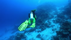 Female scuba diver swimming underwater Stock Footage