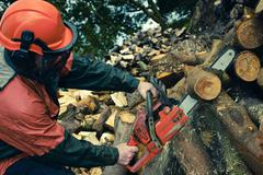 Man Cutting Tree with Chainsaw, Devon, England Stock Photos