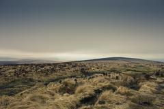 View of Dartmoor From Rippon Tor, Widecombe in the Moor, Devon, England - stock photo