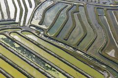 Stock Photo of Aerial View of Aquaculture in Bay of Cadiz, Costa de la Luz, Cadiz Province,
