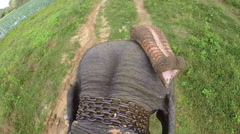 Aerial view of elephant ride with head and flapping ears. Stock Footage