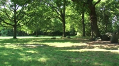 Lawn bordered with oak + pan prehistoric Dolmen, hunebed D17 under oak tree Stock Footage