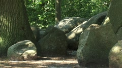 Boulders beside oak tree + zoom out prehistoric Dolmen, hunebed D17 ROLDE Stock Footage