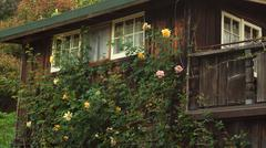 Rustic Cottage with Roses Stock Photos