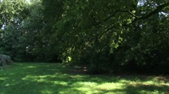 Lawn with oak trees + pan prehistoric Dolmen, hunebed D18 - medium shot Stock Footage