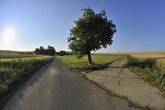 Forked Road, Unterpleichfeld, Wurzburg District, Franconia, Bavaria, Germany - stock photo
