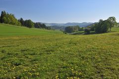 Dommel, Ottlar, Diemelsee, Hesse, Waldeck-Frankenberg, Germany Stock Photos