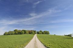 Dirt Road, Usseln, Willingen, Waldeck-Frankenberg, Hesse, Germany Stock Photos