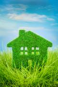 House on the green grass Stock Illustration