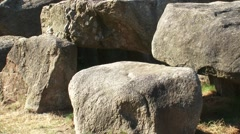 NOORD-SLEEN Hunebed D50, a very well preserved  Prehistoric Dolmen + zoom out Stock Footage
