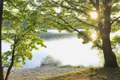 Lake Edersee, Kellerwald-Edersee National Park, Hesse, Germany - stock photo