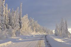 Road, Valtavaara, Kuusamo, Northern Ostrobothnia, Oulu Province, Finland - stock photo