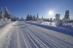 Road, Kuusamo, Northern Ostrobothnia, Oulu Province, Finland - stock photo