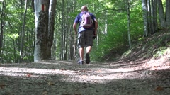 POV View Tourist Mountain Holiday Hiking Forest Path Healthy Nature Outgoing  Stock Footage