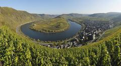 Moselle River, Mosel Valley and Bremm, Cochem-Zell, Rhineland-Palatinate, Stock Photos