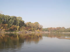 Ukrainian nature, river bank Stock Footage
