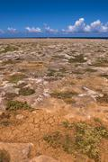 Arid Landscape, Arikok National Park, Aruba, Lesser Antilles, Caribbean - stock photo