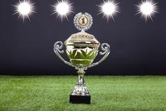 Close-up of trophy cup lying on green pitch filed Stock Photos