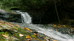 Closeup of Mountain Stream water rushing by. Stock Footage