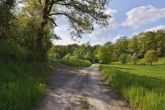 Forked Country Lane in Spring, Grossheubach, Spessart, Bavaria, Germany Stock Photos
