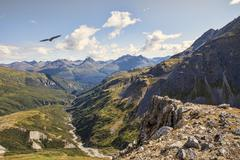 Eagle soaring over high elevation mountains in Canada Stock Photos