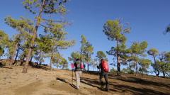 Hiking people trekking on hike - stock footage