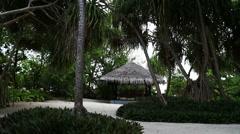 Beach garden Stock Footage