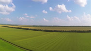 Stock Video Footage of Over  beautiful field with yellow and green crops. Aerial  rural panorama